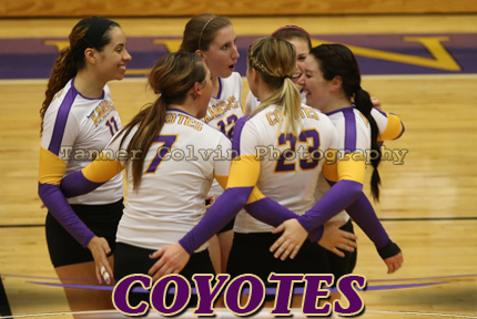 The Coyotes celebrate a point during the third set of KWU's match with Southwestern at Mabee Arena