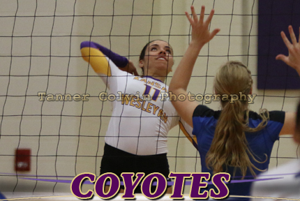 Jessica Webb had 12 kills for the Coyotes on Wednesday night at McPherson