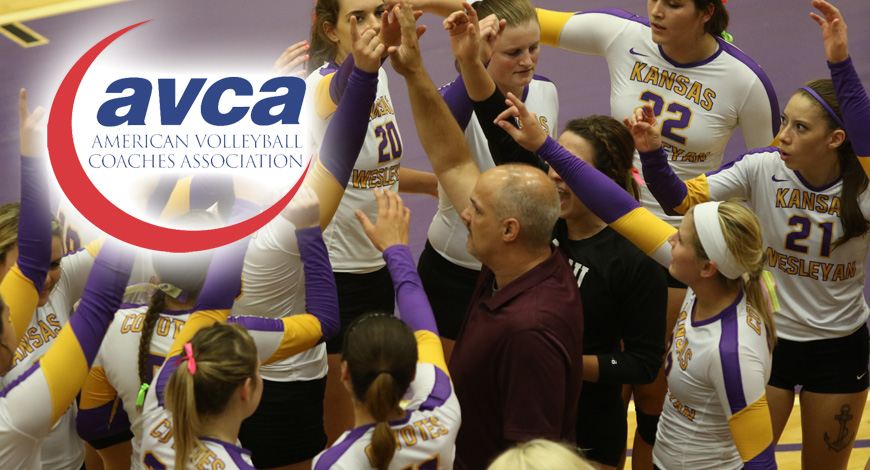 Photo for Volleyball earns seventh straight AVCA Team Academic Award