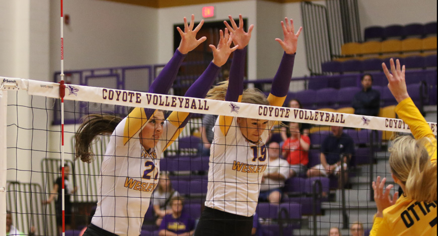 Photo for Volleyball unable to get past No. 22 Ottawa